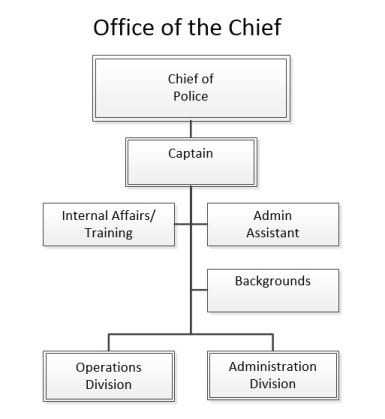 chief_org