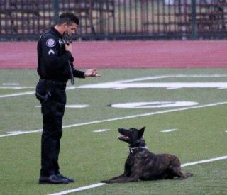 "Corporal Grimes with K9 ""Boy"""