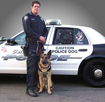 K-9 Officer and Dog